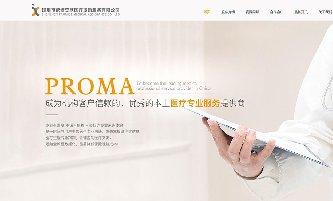 依诺安欣医疗援助服务公司响应式网站建